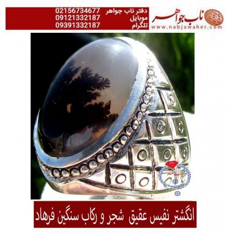 انگشتر نفیس عقیق جزع شجر یمنی کد 1165